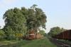 Train to Patalpani 029 - Train 52963 arriving at Patalpani
