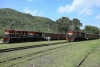 Train to Patalpani 111 - The two trains now ready for departure