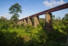 Train to Patalpani 130 - The dhulghat spiral viaduct viewed from below