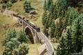 Hochschwarzwald 43 - Mixed freight on the Gutach bridge 1