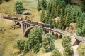 Hochschwarzwald 44 - Mixed freight on the Gutach bridge 2