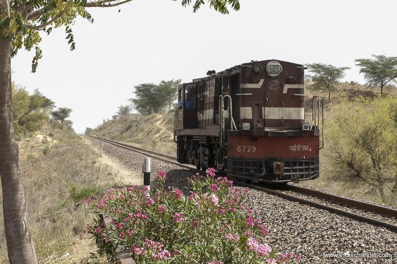 Shekhawati Express blog - A light loco heads towards Churu